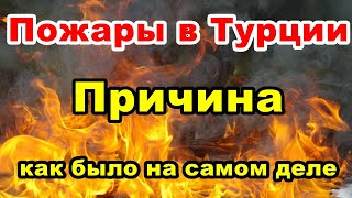 Пожары в Турции. Причина.