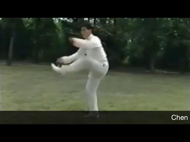 Chen Xiao Xing - Tai Chi style Chen Laojia Yilu 1990's  [陈氏太极拳老架 Taijiquan style Chen]