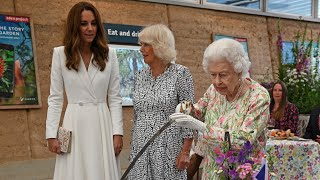 video: Watch: The Queen insists on cutting cake with ceremonial sword