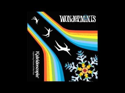 the wondermints |