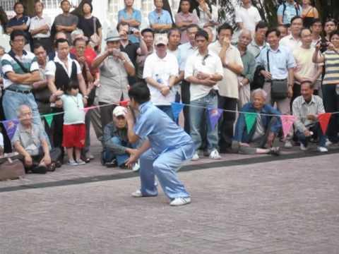 Lost Monkey form, Kung Fu corner.