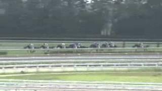 2010.08.21 新潟1R 2歳未勝利 ニシノステディ