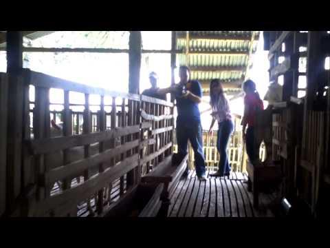 Naawan Goat Farm