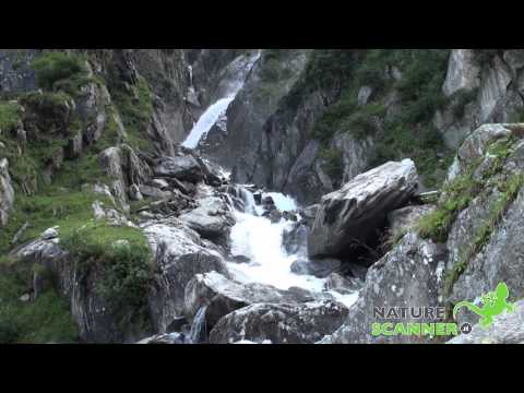 Val Sumvitg en Rein da Sumvitg Waterval | Graubünden