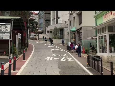 青春の坂道  岡田奈々 cover