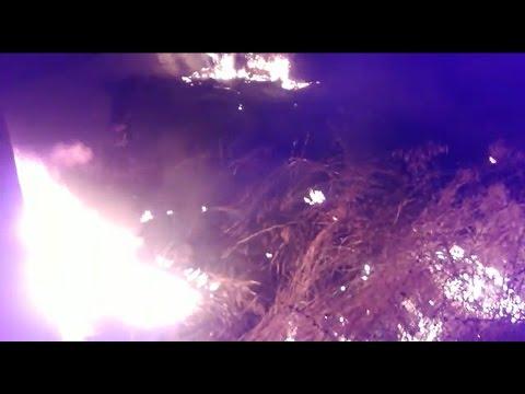 Incendio en terrenos abandonados de la Ciudad del Flamenco de Jerez