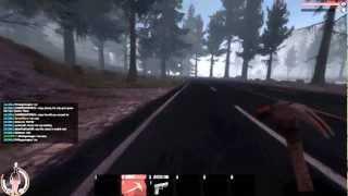 WarZ GamePlay