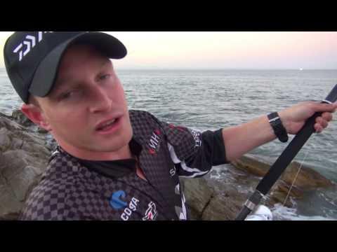 ASFN Rock & Surf - 180kg Ragged Tooth Shark At St Francis Bay - Night Swimming
