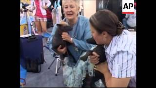 Hairless Dogs Steal Show At 3-day International Show