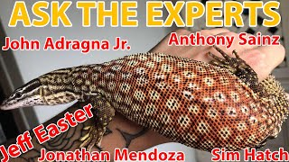 Ask The Experts: Ackie Monitor's | Featuring Jeff Easter, Sim Hatch And Other Well Known Breeders!