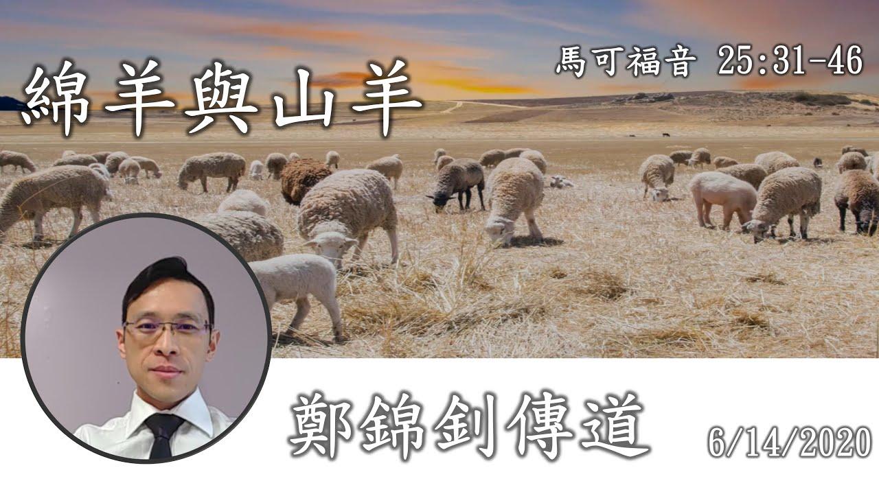 信息分享:綿羊與山羊, 講員: 鄭錦釗傳道 - YouTube