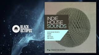 Indie House Sounds - Xfer Serum Presets & Samples