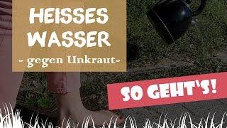 ☀ Heißes Wasser Gegen Unkraut | Kochendes Wasser Gegen Unkraut? Wir Testen! | Garten-und-Freizeit.de