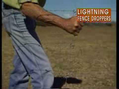 Ferdinand The Bull Beaten By Lightning Fencedroppers Youtube
