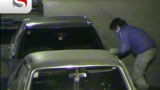Unos 100 delitos ya fueron detectados por las cámaras de seguridad en las calles de Mendoza 4 thumbnail