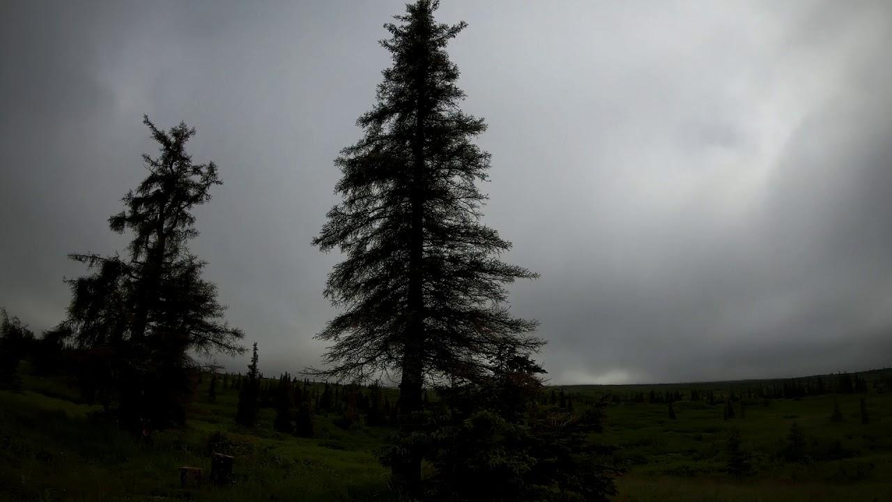 Baldy Mountain Challenge Race 2020 Alaska