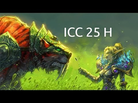 WOTLK 🎫 Icecrown Citadel 25 Man Heroic 🎮 MM Hunter 3.3.5 PVE 🎲 POV