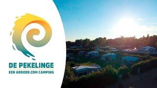 Comfortplaats - Camping De Pekelinge