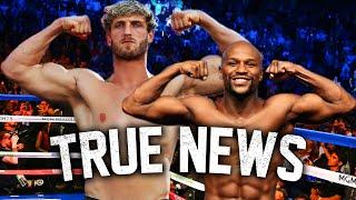 Logan Paul vs Floyd Mayweather... True Geordie Reacts