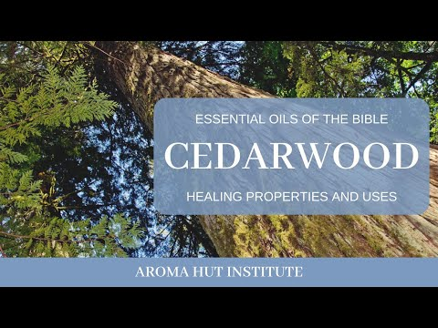 cedarwood-essential-oil-and-cedarwood-oil-benefits