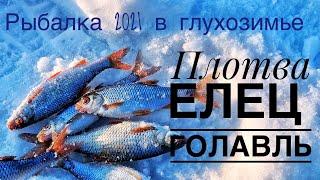 Рыбалка 2021 ловля на мормышку Рыбачу на реке