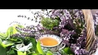 Купить монастырский чай в Ульяновске