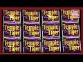 ** SUPER BIG WIN ** Temple Tiger n others ** SLOT LOVER ...