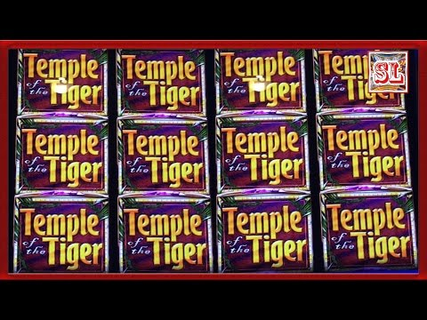 ** SUPER BIG WIN ** Temple Tiger n others ** SLOT LOVER **