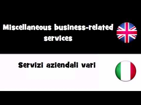 VOCABULARY IN 20 LANGUAGES = Miscellaneous business related services