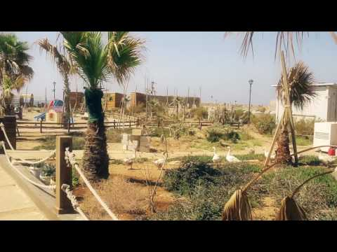 Al Meena - Tripoli