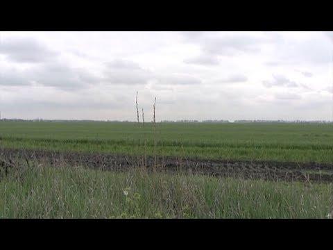 900 многодетных семей на Кубани в этом году получат землю под строительство домов. Новости Эфкате