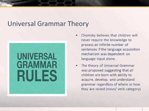 Noam Chomsky's Theory of Universal Grammar