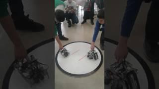 В Елабуге проходят Открытые соревнования по робототехнике(, 2016-12-11T09:42:48.000Z)