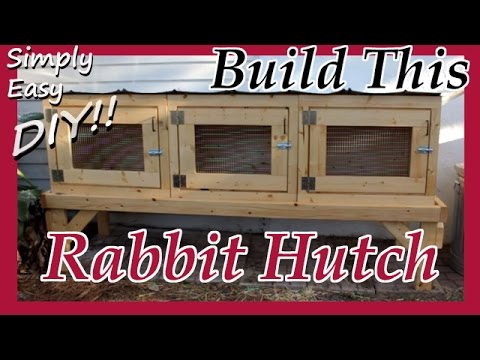 DIY Rabbit Hutch / Cage on rabbit cages, rabbit blueprints, rabbit glass, rabbit couple, snare trap plans, rabbit hutch, rabbit making a home, rabbit playground, rabbit beauty, rabbit shit, rabbit housing, rabbit pens, rabbit fart, rabbit runs product, rabbit engineering, rabbit houses outdoor, rabbit houses and sleeping quarters, rabbit runs and houses, rabbit condo,