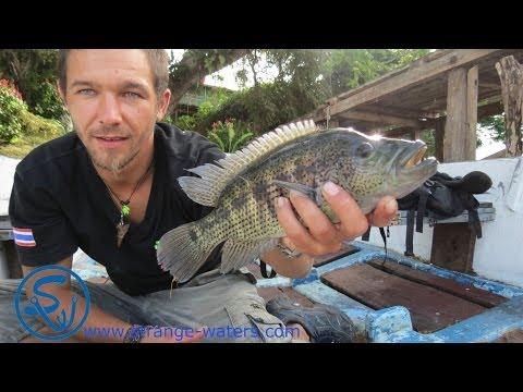 Fishing adventure Solentiname archipelago/strange-waters/fishing