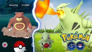 SUPER RARE GEN 2 CATCHES | Pokemon Go | Tyranitars First Evolution and Ursaring!