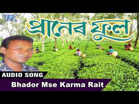 Bhador Mse Karma Rait  || Dilip Nayak || New Assamese Songs 2016