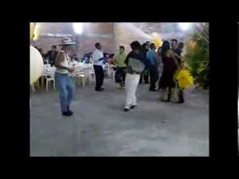 LA ABEJA MIOPE - BRAZEROS MUSICAL INTEGRACIONES MUSICALES MS