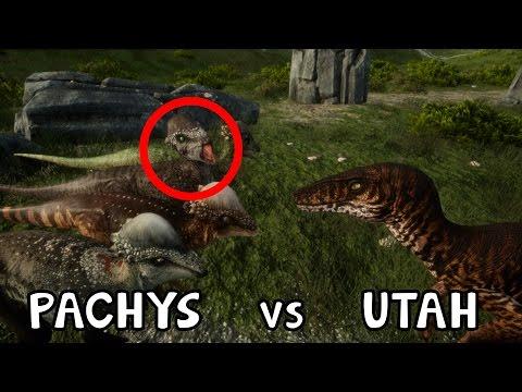 The Isle: 4 PACHYCEPHALOSAURUS vs UTAHRAPTOR {Ep.211}