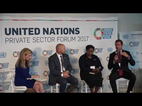 UN Private Sector Forum 2017 - Interview Panel One: Catalyzing Finance for Sustainable Development