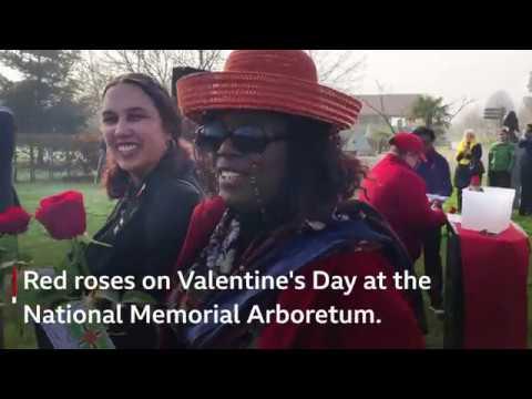 Caribbean memorial plan
