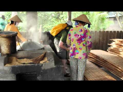Making Rice Noodles - Cần Thơ, Vietnam - Ansan Answers