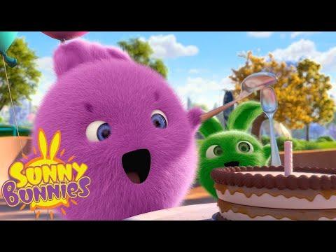 sunny-bunnies- -geburtstags-skateboard- -cartoons-für-kinder- -wildbrain