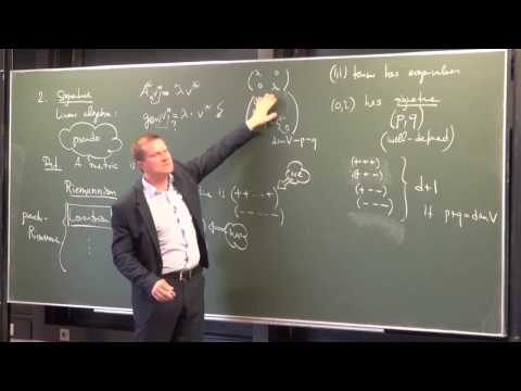 Lecture 10: Metric Manifolds (International Winter School on Gravity and Light 2015)