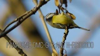 photography panasonic dmc gh2 and h fs100300