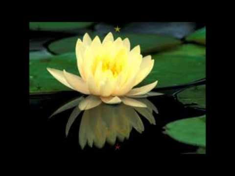 Namo Guan Shi Yin Pusa (Music)