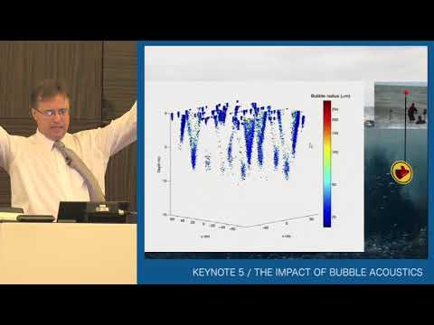 Tim Leighton - THE IMPACT OF BUBBLE ACOUSTICS // ICSV24