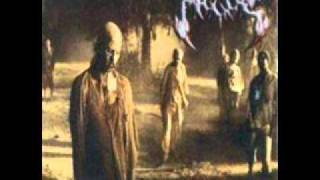 Maggots - Reanimation of the Dead