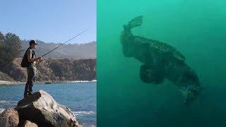 Rock Fishing with Underwater Camera and Swimbaits