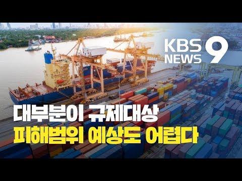 백색국가 제외되면 사실상 모든 소재.부품이 대상…피해 크기·범위 예상도 어려워 / KBS뉴스(News)
